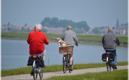 Une CSG réduite pour une partie des retraités